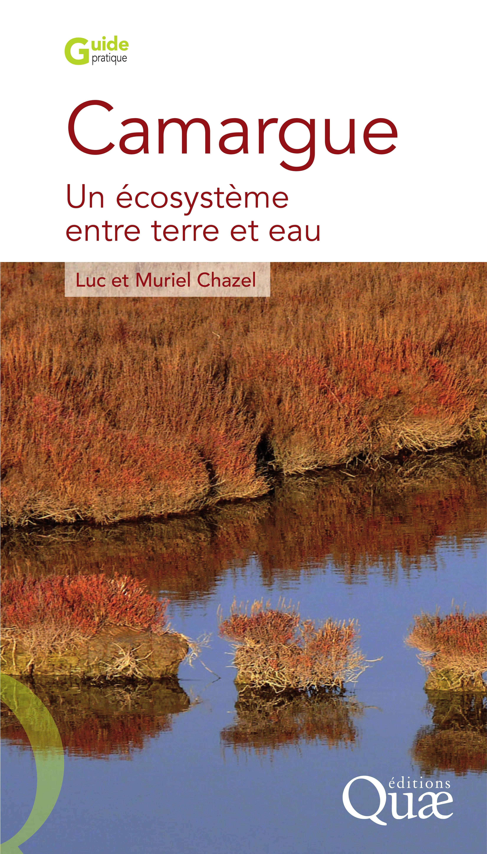 Camargue ; un écosystème entre terre et eau