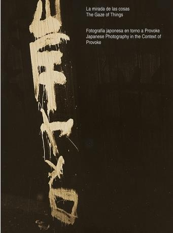 The gaze of things japanese photography in the context of provoke