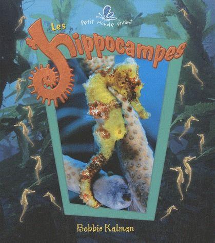 les hippocampes