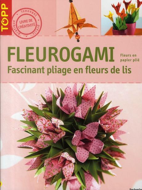 Fleurogami ; fascinants pliages