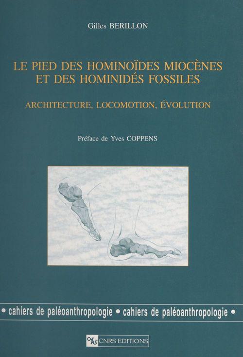 Pied des hominoides miocenes