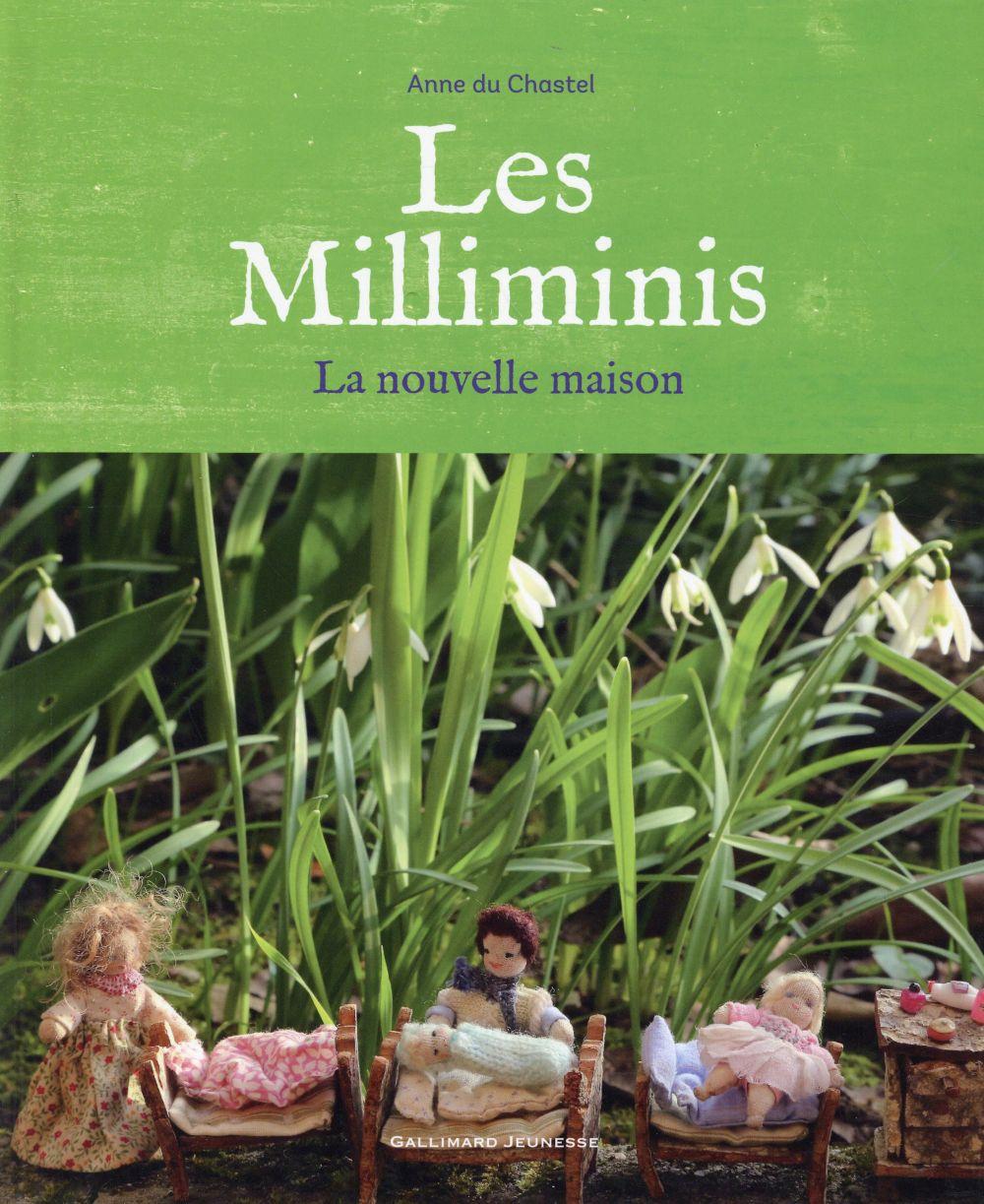 Les milliminis (la nouvelle maison)