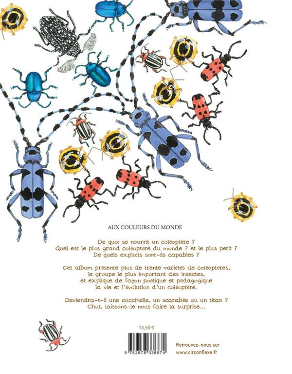 L'histoire d'une coccinelle et autres coléopteres