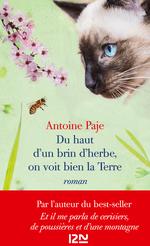 Vente EBooks : Du haut d'un brin d'herbe, on voit bien la Terre  - Antoine PAJE
