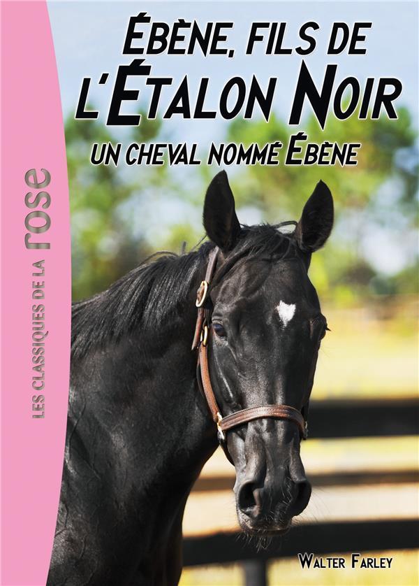 L'ETALON NOIR 22 - UN CHEVAL NOMME EBENE - T22 FARLEY STEVEN