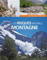 Vente Livre Numérique : Les risques naturels en montagne  - Didier Richard - Florence Naaim-Bouvet