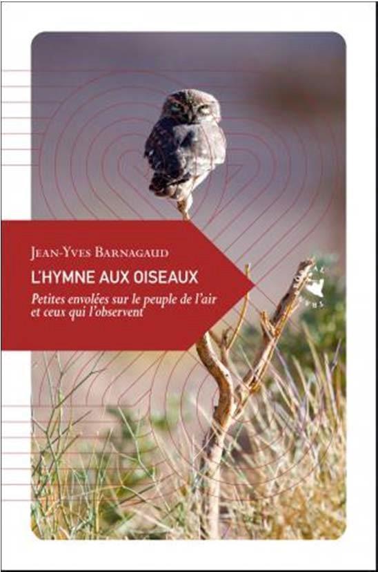 l'hymne aux oiseaux ; petites envolées sur le peuple de l'air et ceux qui l'observent