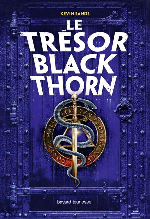 Le mystère Blackthorn T.2 ; le trésor Blackthorn