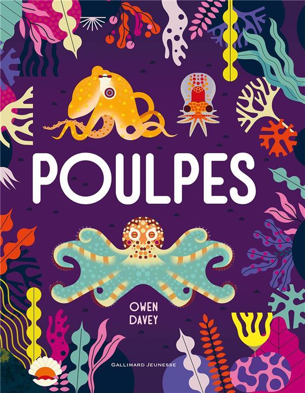 Poulpes (TP)