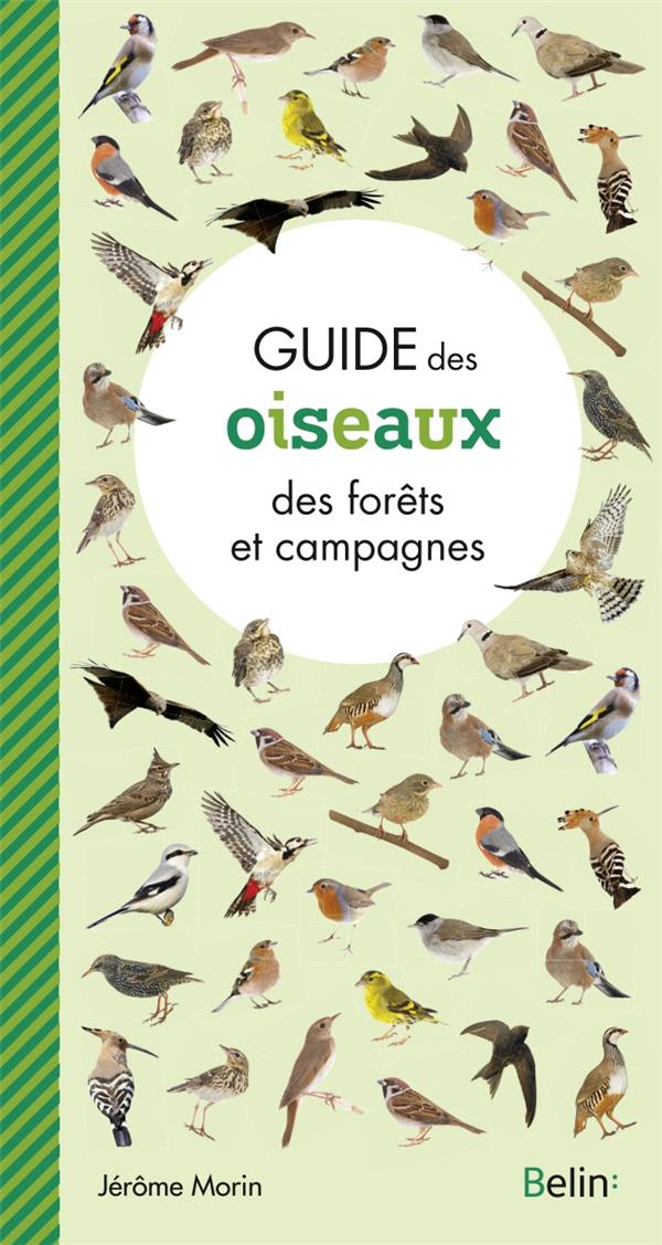 guide des oiseaux des forêts et campagnes