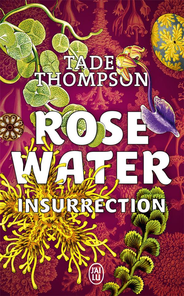 Rosewater T.2 ; insurrection