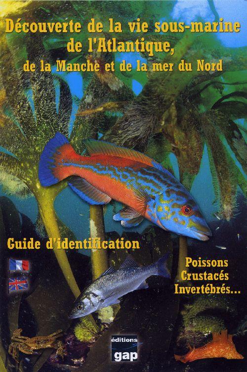 Decouverte De La Vie Sous-Marine De L'Atlantique, De La Manche Et De La Mer Du Nord ; Poissons, Crustaces, Invertebres...; Guide D'Identification
