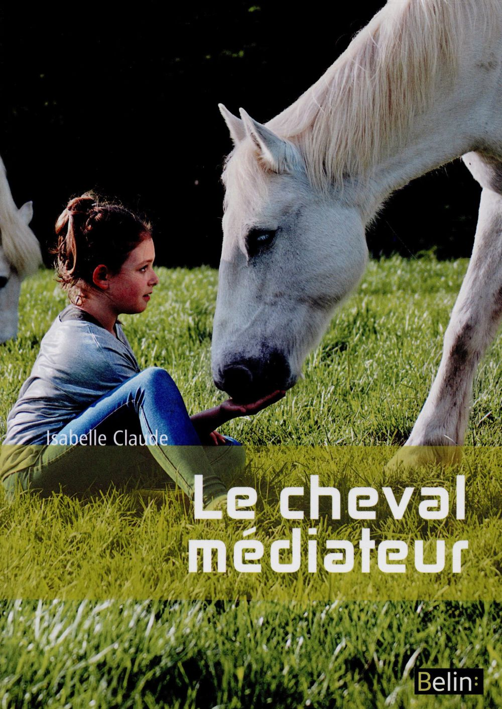 Le cheval médiateur ; de l'équitation thérapeutique à la médiation équine