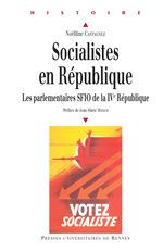 Vente Livre Numérique : Socialistes en République  - Noëlline Castagnez