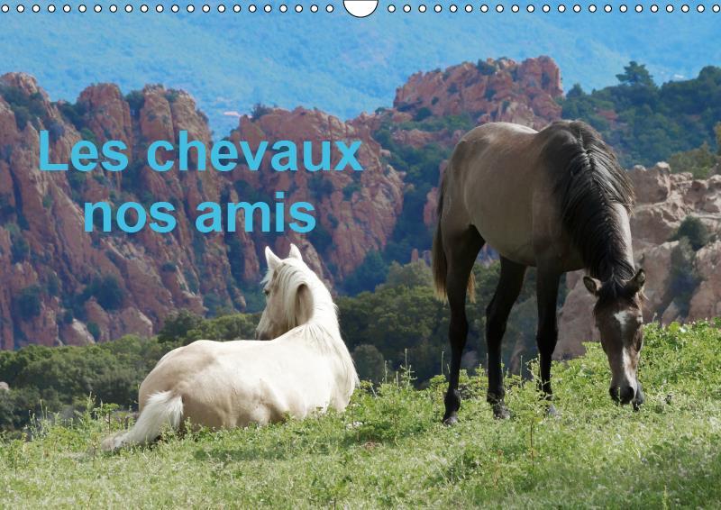Les chevaux nos amis (calendrier mural 2019 din a3 horizontal) - une serie de photos de nos amis les