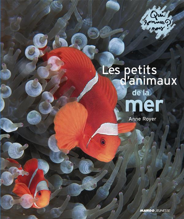 Les qui sommes-nous ? les petits d'animaux de la mer
