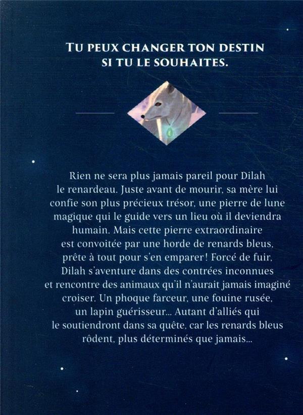 La quête du renard blanc t.1 ; la pierre mystérieuse