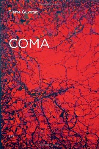 pierre guyotat coma
