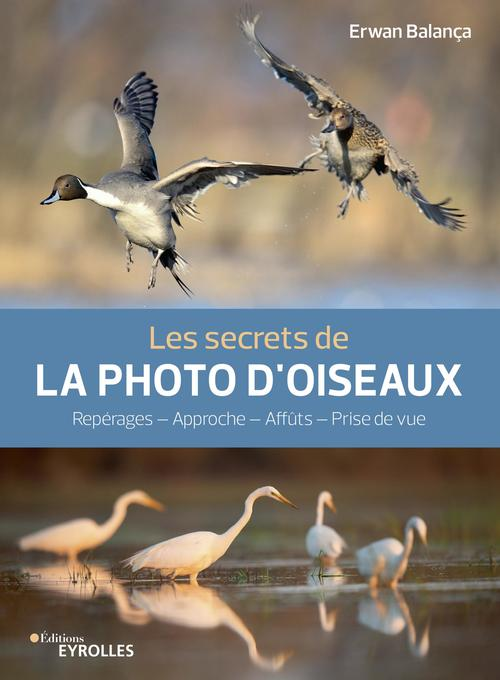 les secrets de la photo d'oiseaux - reperages - approche - affuts - prise de vue