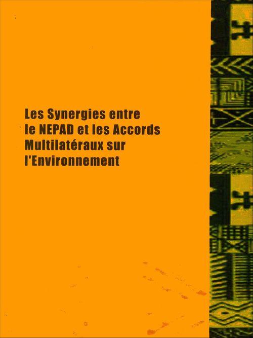 Les synergies entre le NEPAD et les accords multilatéraux sur l'environnement