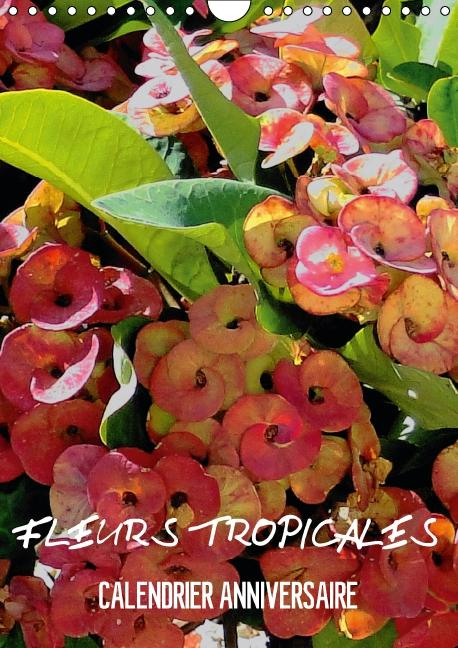 Fleurs tropicales / calendrier anniversaire (Calendrier mural Calendrier perpétuel DIN A4 vertical)