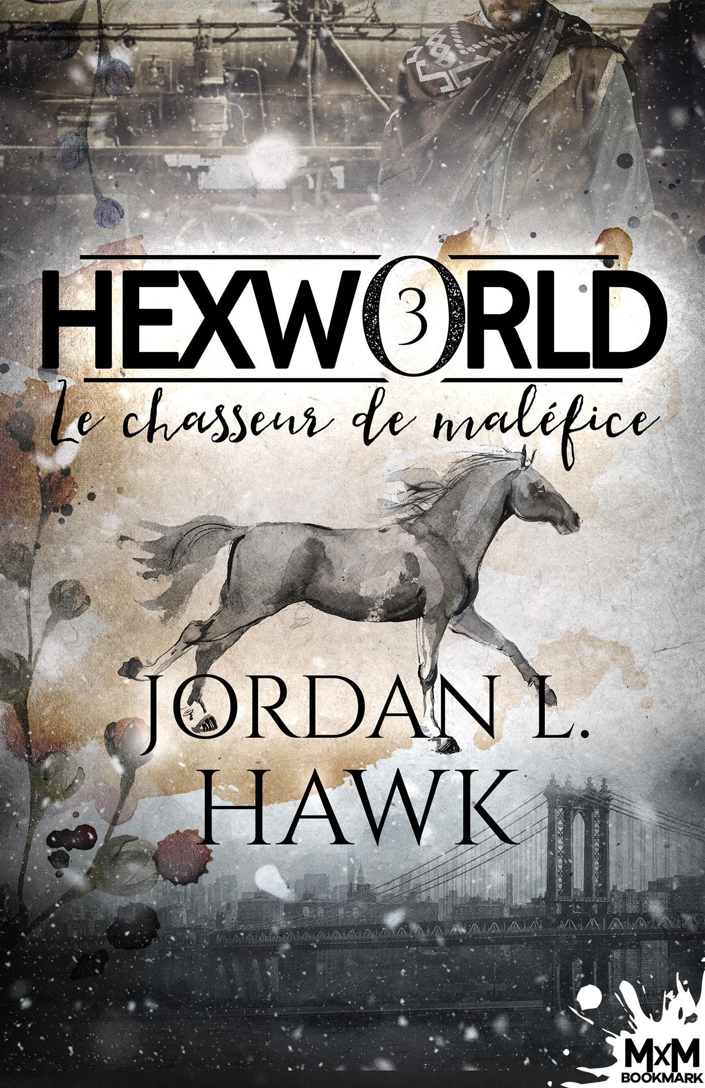 Hexworld t.3 ; le chasseur de maléfice