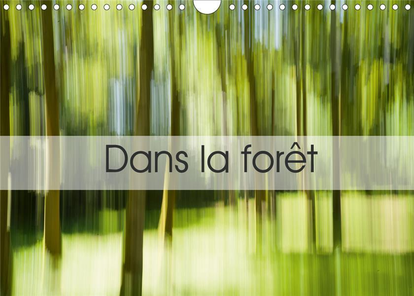 Dans la forêt (édition 2020)