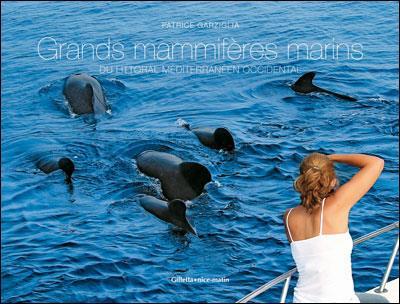 Grands mammifères marins du littoral méditerranéen occidental