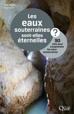 Vente Livre Numérique : Les eaux souterraines sont elles éternelles ? 90 clés pour comprendre les eaux souterraines  - Jean Margat - Thierry Ruf