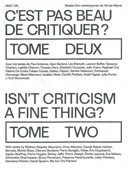 C'est pas beau de critiquer ? t.2