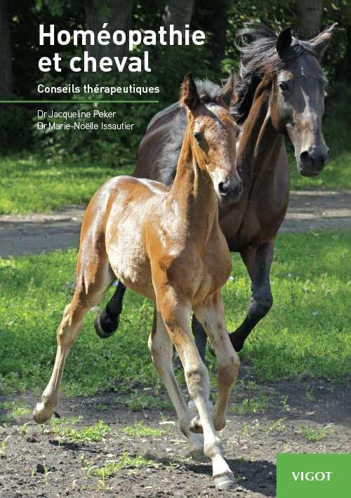 Homéopathie et cheval ; conseils thérapeutiques