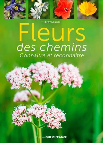 Fleurs des chemins