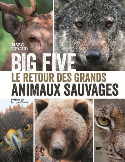 Big five ; le retour des grands animaux sauvages