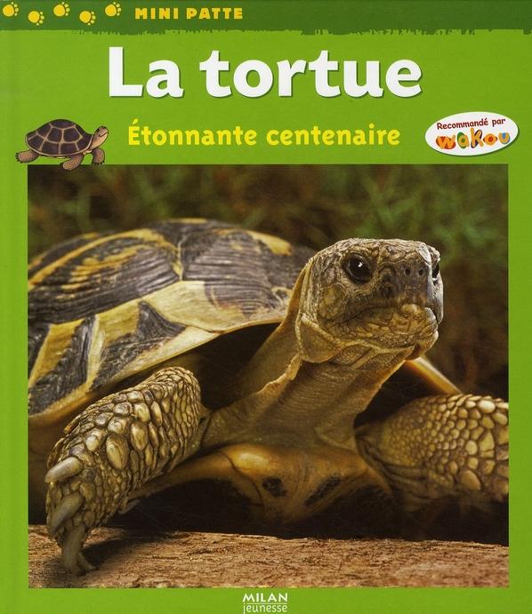 La tortue ; étonnante centenaire