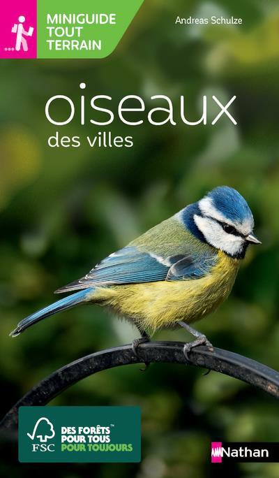 Oiseaux des villes