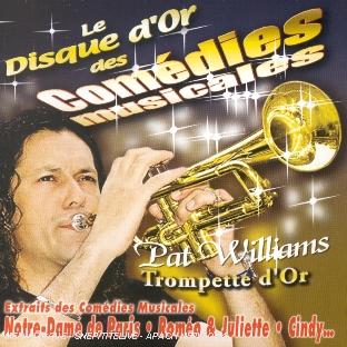 Le Disque D'or Des Comédies Musicales