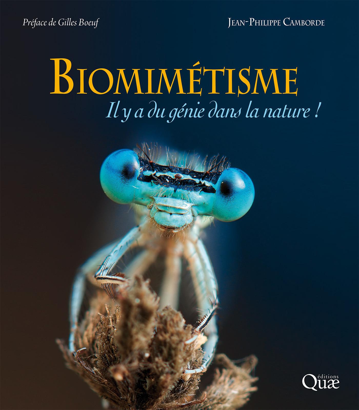 Biomimétisme ; il y a du génie dans la nature !