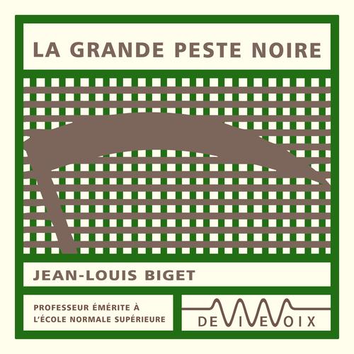 La Grande Peste noire  - Jean-Louis Biget