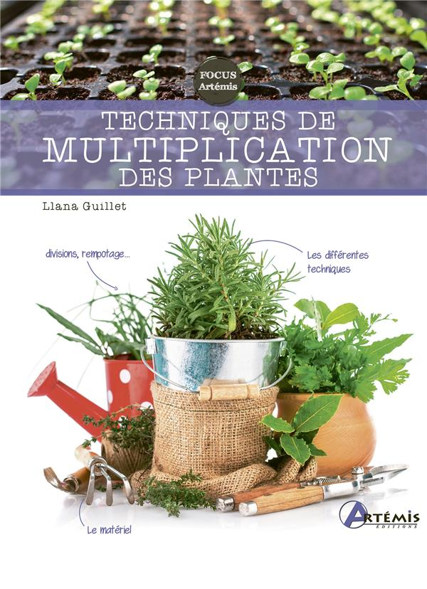 Techniques de multiplication des plantes
