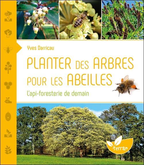 Planter des arbres pour les abeilles ; l'api-foresterie de demain