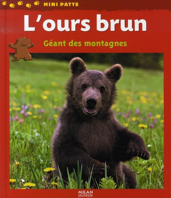 L'Ours Brun, Geant Des Montagnes