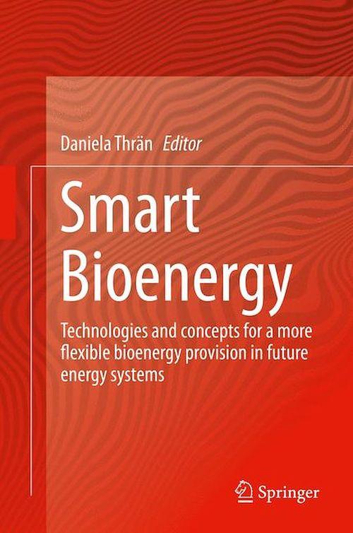 Smart Bioenergy  - Daniela Thrän