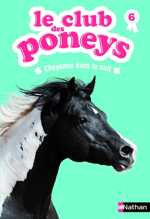 Le club des poneys t.6 ; Cheyenne dans la nuit
