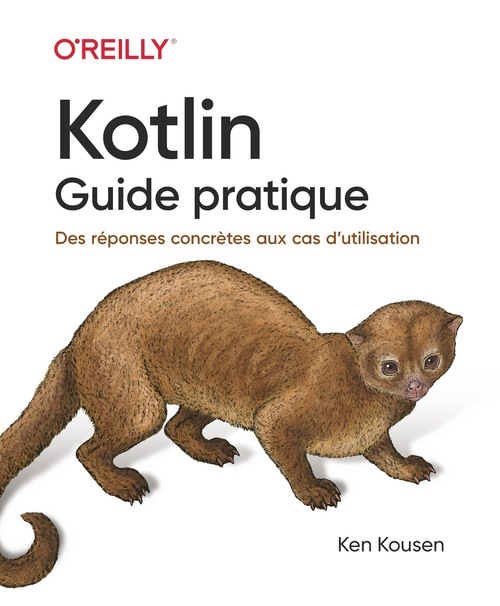 Kotlin ; guide pratique