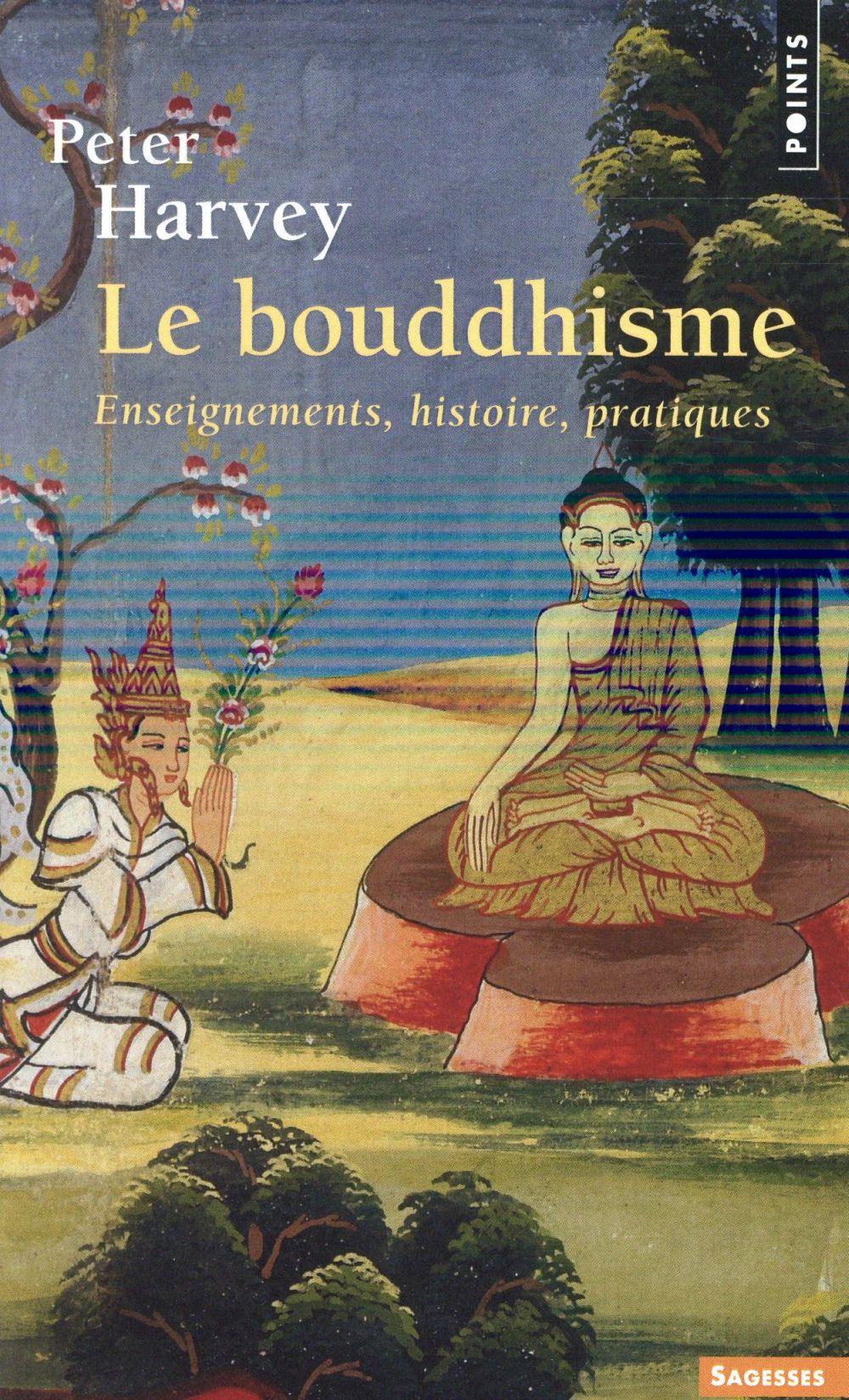 le bouddhisme ; enseignements, histoire, pratiques