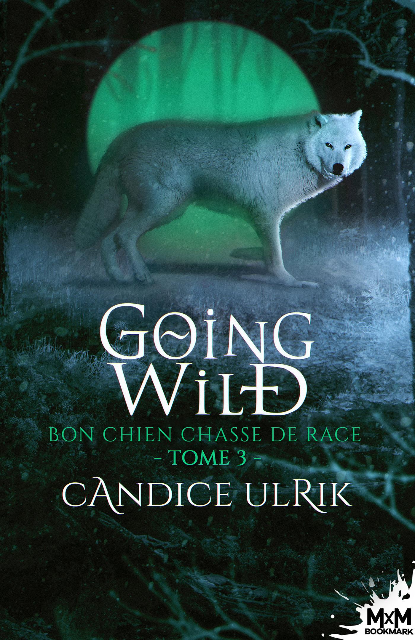 Bon chien chasse de race  - Candice Ulrik