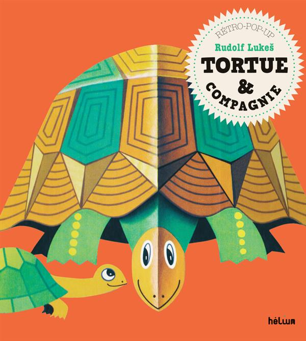 Tortue & compagnie