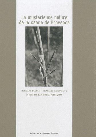 La mystérieuse nature de la canne de Provence