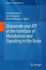 Glutamate and ATP at the Interface of Metabolism and Signaling in the Brain  - Alexei Verkhratsky - Vladimir Parpura - Arne Schousboe