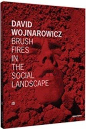 David wojnarowicz brush fires in the social landscape /anglais